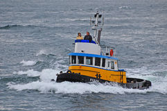 Blue,white and yellow tugboat  goes to the races Stock Photo