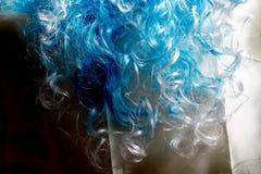 Blue Wig Macro Royalty Free Stock Photography