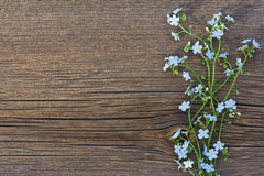 Blue Wild Flowers On Old Wooden Background Royalty Free Stock Photo