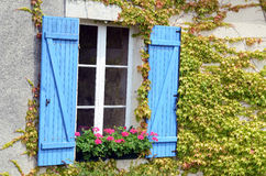 Blue window Royalty Free Stock Images