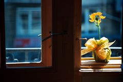 The blue window Stock Photography