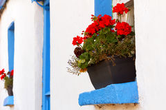 Blue window cottage house Stock Photo