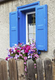 Blue window and flowers Royalty Free Stock Photo