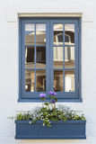 Blue window frame with planter box Stock Image