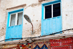 Blue window in morocco   and brown  red carpet Royalty Free Stock Photo
