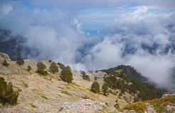 Blue Window in Mountain Sky and Large Clouds Nature Landscape Green Pine Trees royalty free stock photos