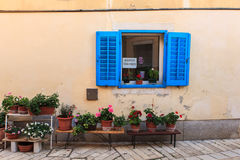 Blue window in Porec. View of blue window and flower pots in Porec, Istria. Croatia Royalty Free Stock Photo