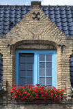 Blue window and red flowers Stock Photography