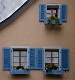 Blue Windows with flowers Staufen im Breisgau Schwarzwald germany royalty free stock photography