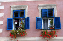 Blue windows with geraniums Stock Photos