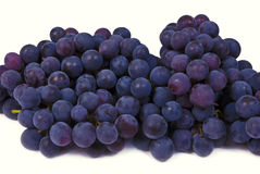 Blue wine grape. On white background stock images