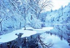 Blue winter. Scene in state park stock photo