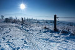 Blue winter Royalty Free Stock Images