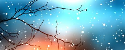 Blue winter blur the background. Bare branch without leaves under rolling with small snow. Royalty Free Stock Image