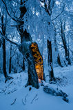 Blue winter forest with single tree with mysterious glow inside