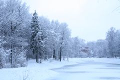 Blue winter landscape Royalty Free Stock Photography