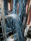 Blue wiring for rack data royalty free stock photo