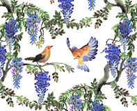 Blue wisteria tree and birds Stock Images