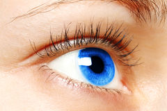 Blue woman eye Royalty Free Stock Photo