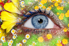 Blue woman eye makeup spring flowers metaphor. Blue woman eye makeup inspired in spring with flowers meadow and yellow petals Stock Photo