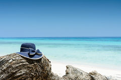 Blue woman's hat on tree near tropical beach, travel concept Stock Photo