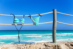 Blue woman's swimming suit hanging on white ropes Royalty Free Stock Images