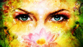 Blue women eyes beaming up enchanting from behind a blooming ro Stock Image