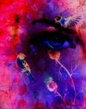 Blue women eyes beaming up enchanting from flower, with bird on pink abstract background.  Stock Image