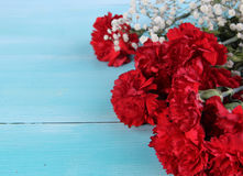 Blue wood background and red Carnation Royalty Free Stock Photo