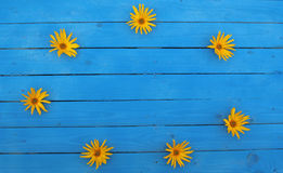 Blue wood planks with some yellow flowers, background Stock Photography