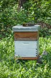 Blue wooden beehive in a green meadow Stock Photography