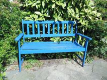 Blue wooden bench empty in park. Blue painted wooden bench in park or garden, empty, with green trees in background, to relax outdoors royalty free stock photos