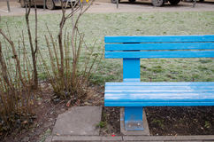 Blue wooden bench fragment near bush in park Stock Photo
