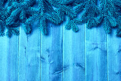 Blue wooden  boards and   christmas tree Stock Photos