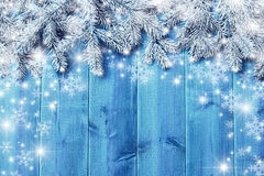 Blue wooden  boards and christmas tree branches Stock Photos