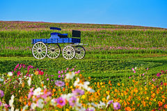Blue wooden cart in Boon Rawd Farm Royalty Free Stock Photo