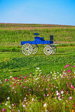 Blue wooden cart in Boon Rawd Farm Royalty Free Stock Image