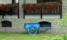 Blue wooden cart with the geranium in the farm Stock Photo