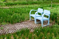 Blue wooden lawn chairs Stock Photos