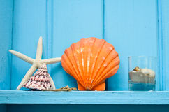 Blue wooden wall decoration with orange shellfish Stock Photo