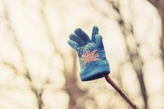 Kid`s glove hanging on a tree royalty free stock photo