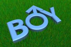 Blue Word Boy on Grass/Gender Symbol royalty free stock photo