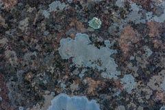 Blue worn grunge texture background. royalty free stock photo