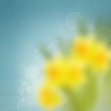 Blue  and yellow blur bokeh background Stock Images