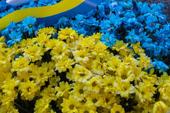 Blue and yellow bouquet in colors of national flag of Ukraine wi Stock Images