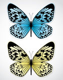 Blue and yellow butterflies Stock Photos