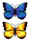Blue and yellow butterflys Royalty Free Stock Images