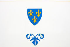 Blue and yellow emblem Royalty Free Stock Photos