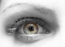 Blue yellow eye. Blue - yellow eye of a woman stock images