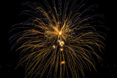 Blue and yellow firework Stock Image